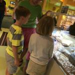 Live Animal Room at the North Museum of Nature and Science
