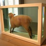 Damien Hirst sheep