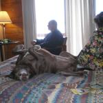 Zoey taking a break.