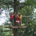 typical tree platform about 40/60 foot off the ground