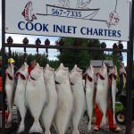 Reel 'Em Inn - Cook Inlet Charters Picture