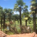 View to the golf cours