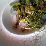 Greens with Goat Cheese Dumplings