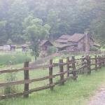Cute little farm...