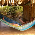 Relaxing hammocks on the property!