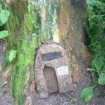 Find the fairy door in the garden