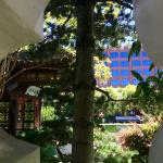 Chinese garden from the street