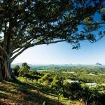 The magic of the Sunshine Coast Hinterland