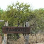 The entrance to the camp