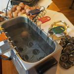 Der DIY Eierkocher