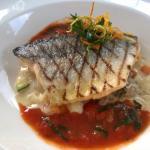 Vorspeise: gegrillter Fisch mit Gemüse und Risotto