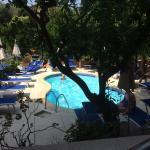Foto de Hotel Regina Sorrento