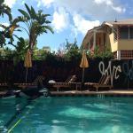 Foto de Freehand Miami