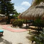Blachi Koko Apartments Bonaire Foto