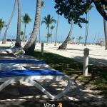 Foto de Islander Resort, a Guy Harvey Outpost
