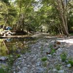 big sur river runs through campground