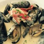 Mussels in wine and cream sauce