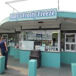 Amy's Frosty Freeze
