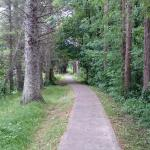 The pathway from the town of Dromahair to the Friary