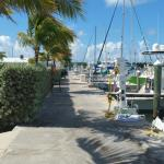 One of the nicest marinas in the Keys