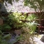 terrasse au jardin ��