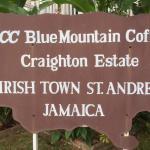 Foto de Blue Mountain Experience
