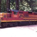 Skink Train