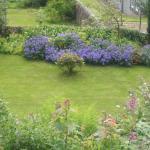 Derrybeg garden