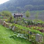 Blick aus Zimmer mit Elbe und hauseigenem Biogarten