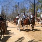 Paseo caballos