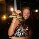 Free Reptile Show!
