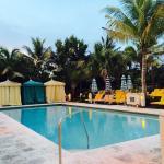 Pool - The Confidante Miami Beach Photo
