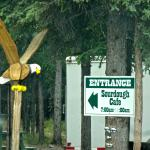 Eagle helps to welcome you