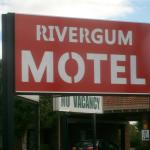 Rivergum Motel $89 double with cooked breakfast conditions  apply