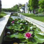 Ein wunderbarer Garten