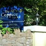 The Coppice Foto