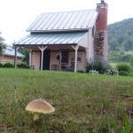 Foto de The Inn at Mount Vernon Farm