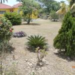 Beautiful grounds of Villa Loyola