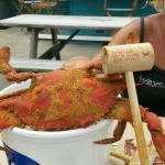 Cant fit shell into bucket