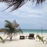 Foto de Playa Selva