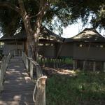 Foto de Wilderness Safaris Mombo Camp