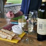 Picnic at Navarro Vineyard & Winery