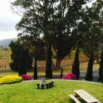Barringwood Vineyard and Cellar Door Cafe