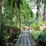 Foto de The Kebun