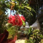 Foto de Hotel Kumala Pantai