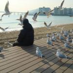 広安里海岸朝の風景