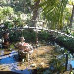 Pond with mosaic bridge