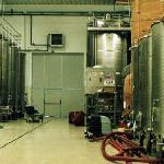 L'area di Stoccaggio dei nostri vini