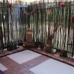 Zen Treatment Garden