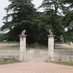 Photo de Château Saint Marcel